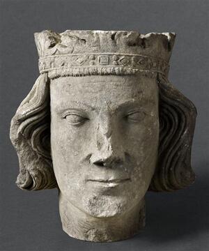 Tête-de-roi-imberbe-CL14419